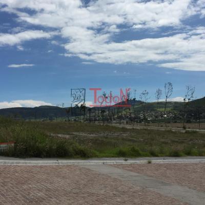 Gran Reserva,  Lomas de Angelópolis Cascatta (M5) | Todo N' Bienes