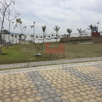 Privada Parque Quintana Roo, Lomas de Angelópolis Cascatta (pPA)
