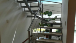 Casa en Renta, SANTA CRUZ GUADALUPE # | Se encuentra ubicado en Cuautlancingo, Peubla | Vendo y Rento