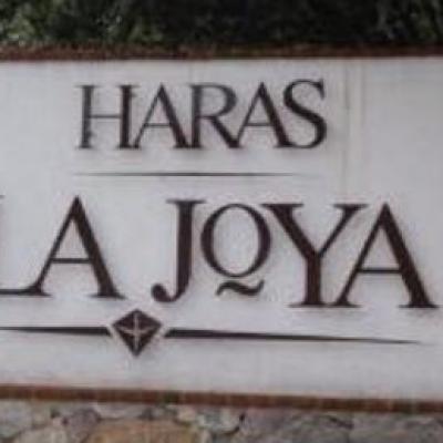 HARAS LA JOYA #