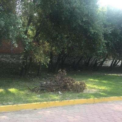 RTESIDENCIAL EL CAMPANARIO ## | Vendo y Rento