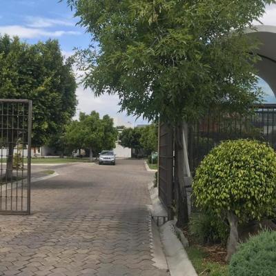 CORTIJO DE SAN MARTINITO ## | Vendo y Rento